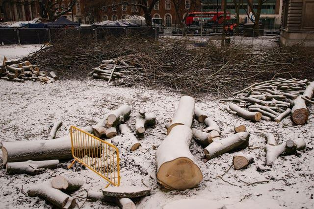 Wood from felled trees lies on the ground at the site of the HS2 Rebellion encampment in Euston Square Gardens (Aaron Chown/PA)