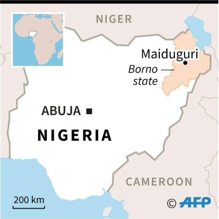 Borno state and its capital Maiduguri, the epicentre of Boko Haram's 12-year insurgency (AFP/Sophie RAMIS)