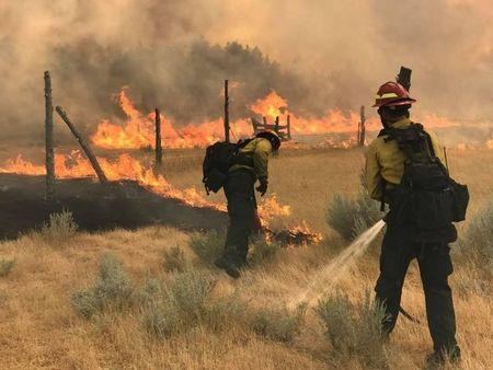 Wildland Firefighters battle the Bridge Coulee Fire, part of the Lodgepole Complex, east of the Musselshell River, north of Mosby, Montana, U.S. July 21, 2017. Bureau of Land Management/Jonathan Moor/Handout via REUTERS