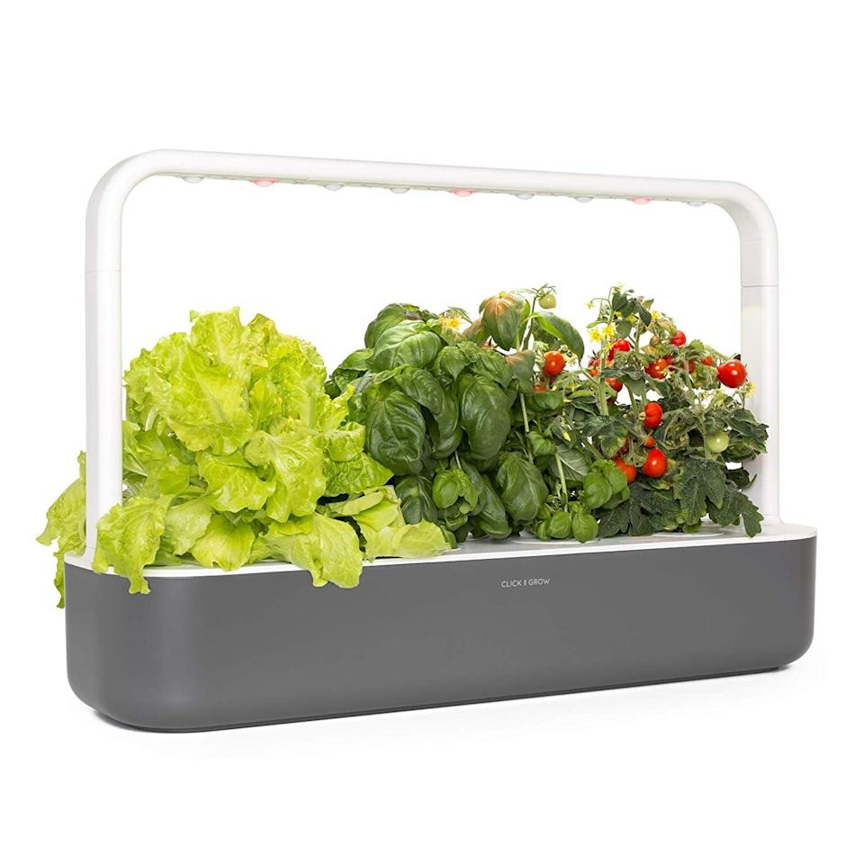 <p>If they live in a small apartment and don't have an outdoor space, treat them to this <span>Click and Grow Smart Garden 9 Indoor Home Garden</span> ($200). The set includes three mini tomato, basil, and green lettuce plant pods that they can grow indoors.</p>