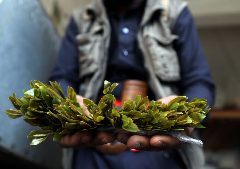 Customer shows qat, a mild stimulant, amid concerns of the spread of the coronavirus disease (COVID-19) at a qat market in Sanaa