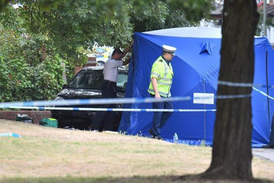 Two killed: Police at the scene after the crash