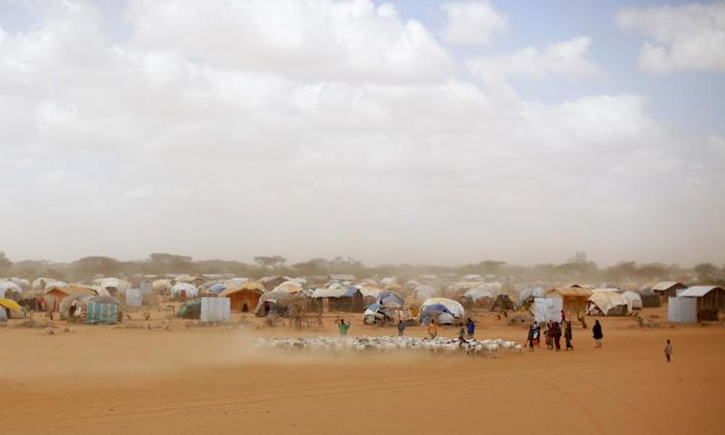 Ifo refugee camp.