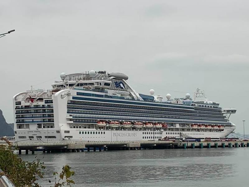 A photo of the Diamond Princess before the couple were quarantined over coronavirus fears.