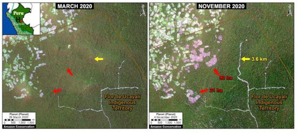 PHOTO: Small scale agriculture, mining, and cattle ranching caused increased deforestation in Peru's central Amazon.  (Photo by Planet/MAAP)