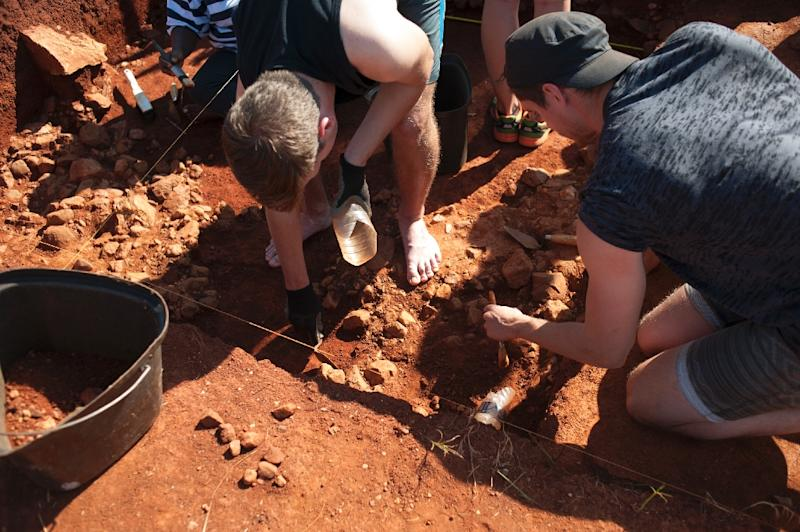 Archeology students excavating a site near the Cradle of Humankind site in Maropeng, South Africa (AFP Photo/Stefan Heunis)