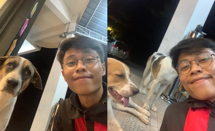 Ridhuan couldn't believe that the dog managed to find him at his workplace. — Picture via Twitter/@AtukNature.