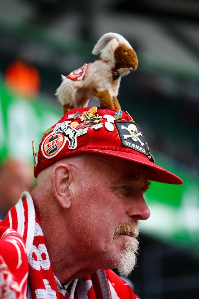Soccer Football - Bundesliga - VfL Wolfsburg v FC Cologne - Volkswagen Arena, Wolfsburg, Germany - May 12, 2018 General view of a Cologne fan before the match REUTERS/Wolfgang Rattay DFL RULES TO LIMIT THE ONLINE USAGE DURING MATCH TIME TO 15 PICTURES PER GAME. IMAGE SEQUENCES TO SIMULATE VIDEO IS NOT ALLOWED AT ANY TIME. FOR FURTHER QUERIES PLEASE CONTACT DFL DIRECTLY AT + 49 69 650050