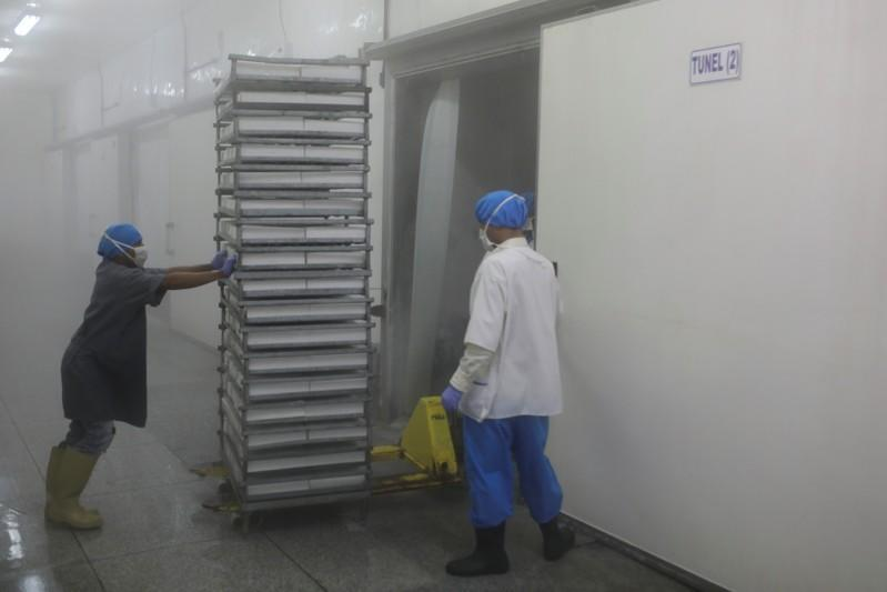 Workers push a cart with frozen shrimp into a freezer at a processing factory in Maracaibo