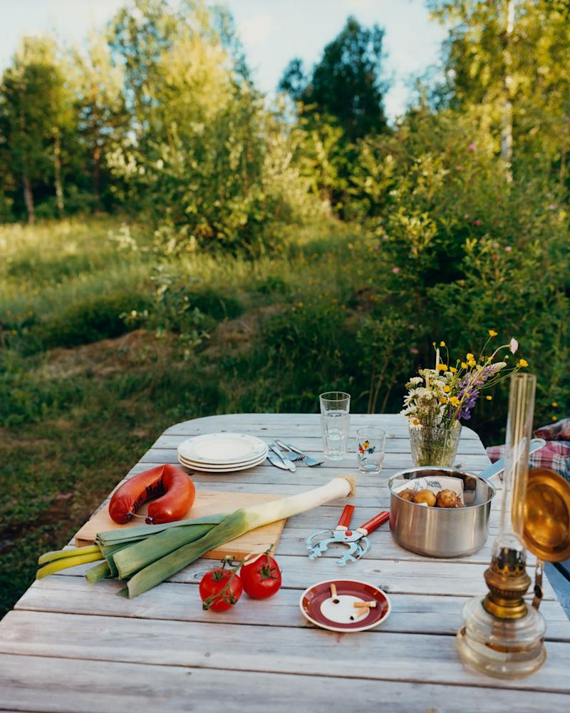 A still life photograph of traditional Swedish summer supper ingredients.