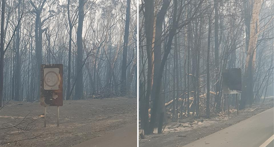 Photos of Natalia Esdaile-Watts took on her drive back to Sydney showing burnt-out bush and smokey haze.