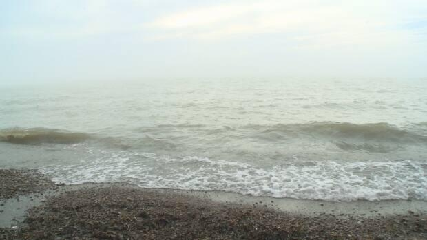 A flood watch is in effect until Monday morning for the Lake Erie shoreline. (Katerina Georgieva/CBC - image credit)