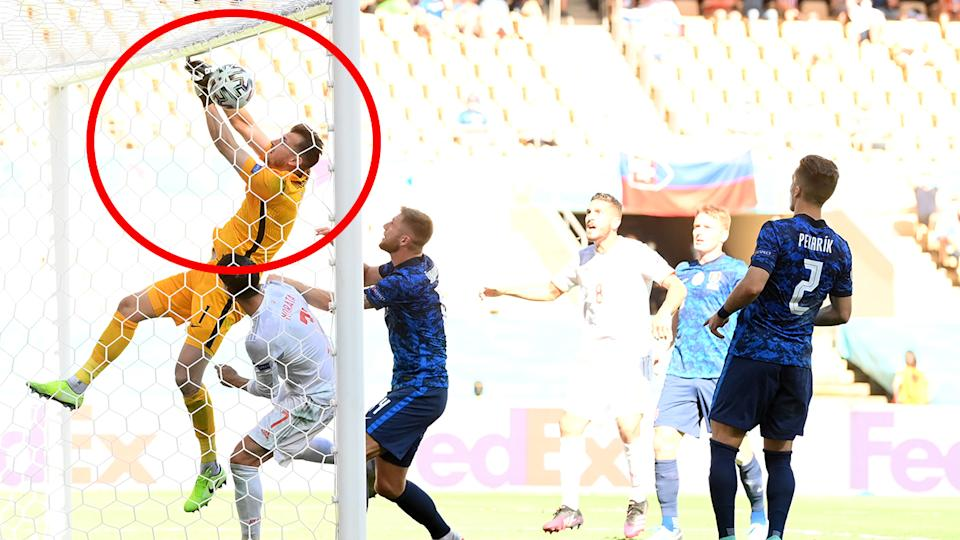 Martin Dubravka (pictured left) dropping the ball into his own net against Spain.