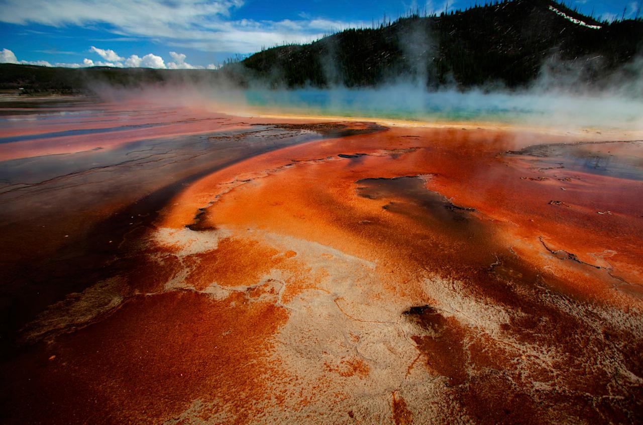 The Grand Prismatic Spring, the largest in the United States and third largest in the world, and it's colored bacteria and microbial mats in Yellowstone National Park, Wyoming, June 22, 2011. REUTERS/Jim Urquhart