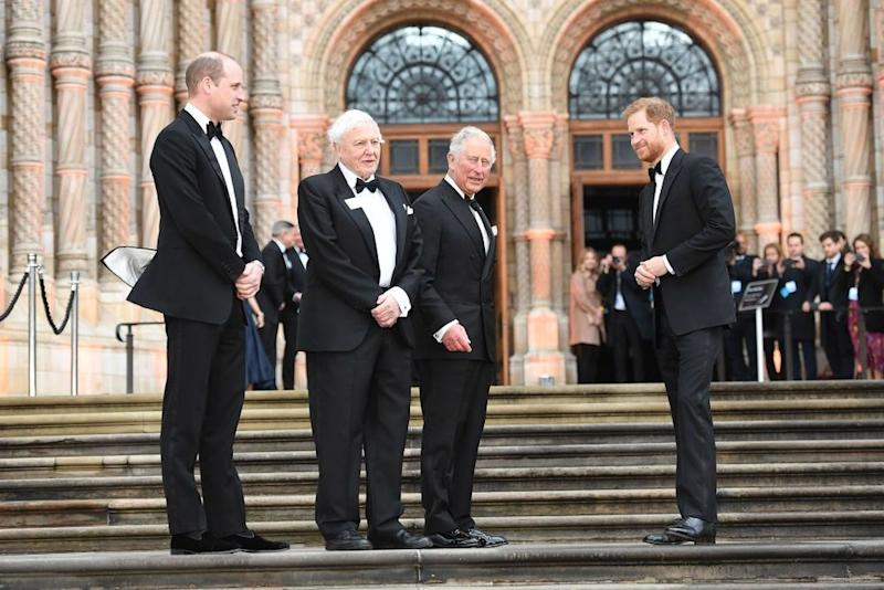 Prince William, Sir David Attenborough, Prince Charles and Prince Harry | Tim Rooke/Shutterstock