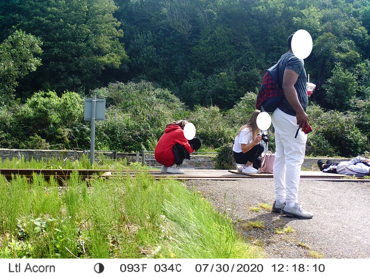A person can be seen lying down on the tracks. (Network Rail)