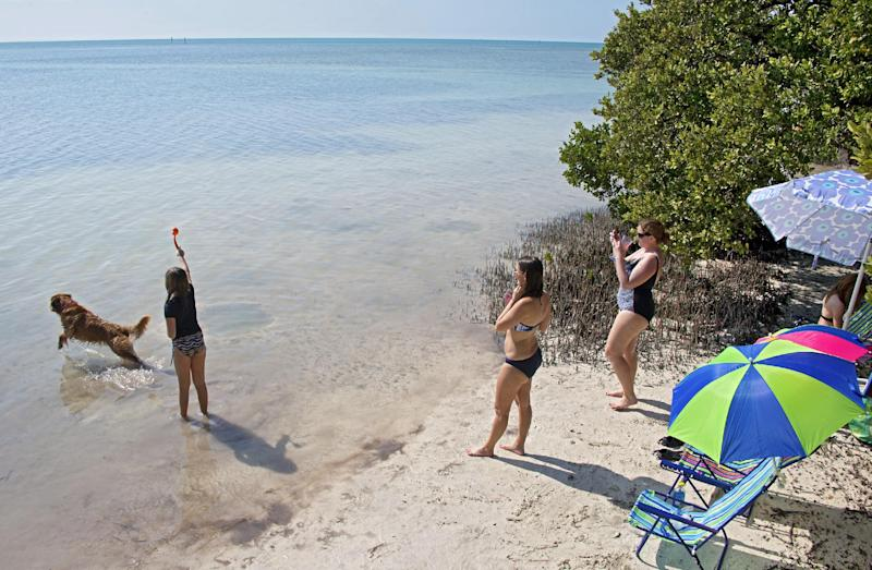 In this photo provided by the Florida Keys News Bureau, visitors to the Florida Keys enjoy a beach in Islamorada, Fla., Saturday, Feb. 9, 2013. While the northeastern United States was being hammered by snow and frigid temperatures, vacationers in the Keys were experiencing sunny conditions with daytime temperatures in the low 70s, according to the National Weather Service Key West office. (AP Photo/Florida Keys News Bureau, Andy Newman)