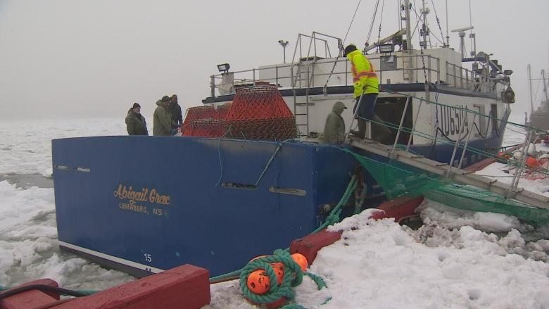 N.L. fishermen worried after double-whammy of snow crab, shrimp announcements
