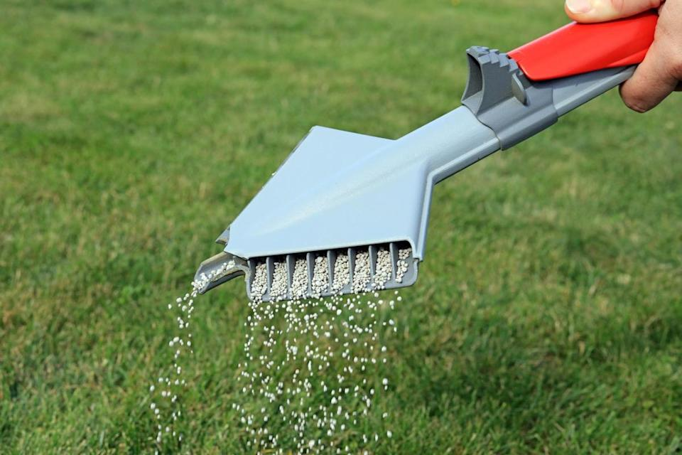 """Your <a href=""""https://bestlifeonline.com/winter-lawn-protection/?utm_source=yahoo-news&utm_medium=feed&utm_campaign=yahoo-feed"""" rel=""""nofollow noopener"""" target=""""_blank"""" data-ylk=""""slk:lawn"""" class=""""link rapid-noclick-resp"""">lawn</a> may benefit from a fertilizing treatment—but only if you're applying it at the correct time of year. """"If you're only going to fertilize once a year, I'd be sure that it's around Labor Day because that's when your lawn needs the most nutrients,"""" says Elron."""