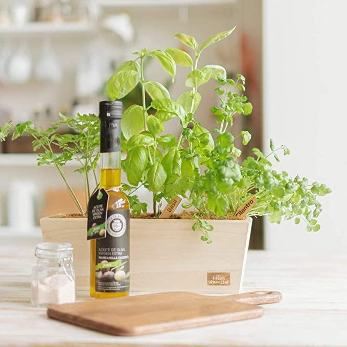 """<h2>Urban Leaf Herb Garden Starter Kit</h2><br><strong>The Hype:</strong> 4 out of 5 stars and 119 reviews<br><br><strong>Plant Parents Say:</strong> """"The wood box is really good looking! Also, I love the little wood stakes where the type of herb appears to have been 'burned' on the label. Soil disks are of good size & the biodegradable square pots in which you grow, fit perfectly inside the box. All ships in the wood box w/ a nice uncoated PAPER printed wrap. VERY eco-friendly. looks awesome by my bottle garden. This product is well thought out & convenient. Perfect gift for gardener &/or chef! Love this.""""<br><br><em>Shop</em> <strong><em><a href=""""https://amzn.to/2L4kp89"""" rel=""""nofollow noopener"""" target=""""_blank"""" data-ylk=""""slk:Urban Leaf"""" class=""""link rapid-noclick-resp"""">Urban Leaf</a></em></strong><br><br><strong>Urban Leaf</strong> Herb Garden Starter Kit, $, available at <a href=""""https://amzn.to/2KKVJBQ"""" rel=""""nofollow noopener"""" target=""""_blank"""" data-ylk=""""slk:Amazon"""" class=""""link rapid-noclick-resp"""">Amazon</a>"""