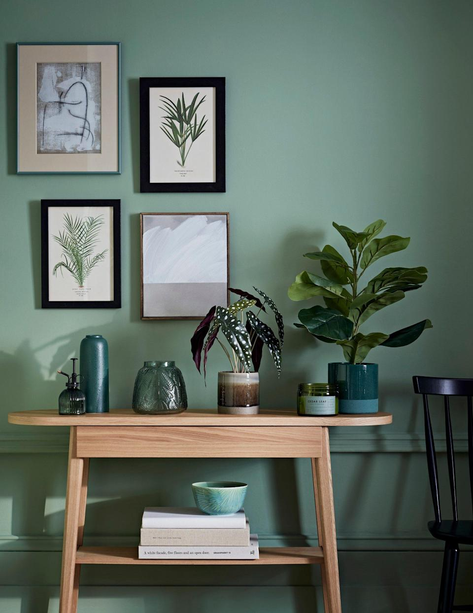 Calming colours and prints of plants - Jon Day Photography