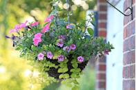 """<p>Want instant colour in your garden? A really easy and inexpensive way to do this is to plant up some hanging baskets. Choose plants such as fuchsias, verbena or petunias, or you can even grow vegetables like tomatoes.</p><p><strong>READ MORE: <a href=""""https://www.housebeautiful.com/uk/garden/plants/g28605157/hanging-basket-plants/"""" rel=""""nofollow noopener"""" target=""""_blank"""" data-ylk=""""slk:The best hanging basket plants for a vibrant display"""" class=""""link rapid-noclick-resp"""">The best hanging basket plants for a vibrant display</a></strong></p>"""