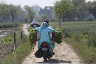 A farmer couple rides homeward after harvesting fresh peas from their farm in village Samrodha, in the northern Indian state of Haryana, Friday, March 5, 2021. Saturday marks 100 days of the ongoing farmer protests against the contentious new agricultural reform laws which have led tens of thousands of farmers to blockade key highways leading to the capital. Multiple rounds of talks have failed to produce any breakthrough on the farmers' key demand to revoke the legislation. (AP Photo/Manish Swarup)