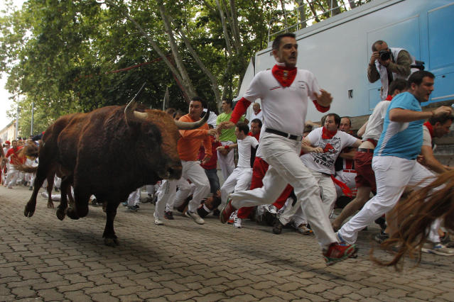 An 'El Pilar' fighting bull follows a reveler during the running of the bulls of the San Fermin festival, in Pamplona, Spain, Friday, July 12, 2013. Revelers from around the world arrive to Pamplona every year to take part on some of the eight days of the running of the bulls. (AP Photo/Daniel Ochoa de Olza)