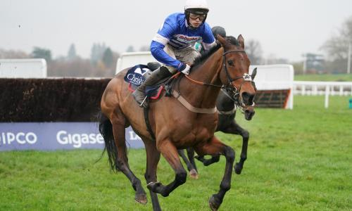 Talking Horses: Cyrname can bounce back on happy Ascot hunting ground
