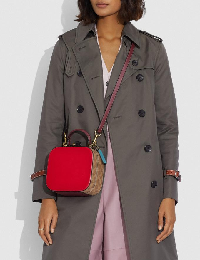Lunar New Year Square Bag In Signature Canvas. Image via Coach.