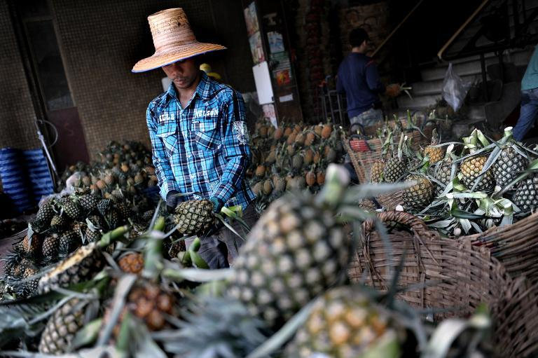 A worker checks a pineapple at a market in Bangkok on June 15, 2009