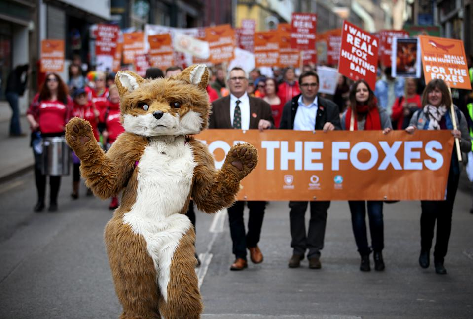 """Protesters during a march on the Royal Mile in Edinburgh organised by the League Against Cruel Sports, OneKind and IFAW calling for a """"real"""" fox hunting ban."""