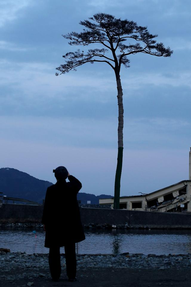 A man takes a picture of the single pine tree left standing after last year's March 11th tsunami, which swept away an entire forest in the city of Rikuzentakata on March 11, 2012 in Rikuzentakata, Japan. People see the tree's miraculous survival as a symbol of hope and want to preserve it as a living monument. On the one year anniversary, the areas most affected by last year's March 11, 2011 earthquake and subsequent tsunami that left 15,848 dead and 3,305 missing according to Japan's National Police Agency, continue to struggle. Thousands of people still remain without homes living in temporary dwellings. The Japanese government faces an uphill battle with the need to dispose of rubble as it works to rebuild economies and livelihoods. Across the country people are taking part in ceremonies to pay respects to the people who lost their lives.  (Photo by Chris McGrath/Getty Images)