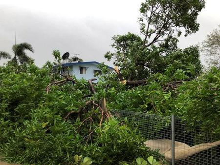 A view of fallen trees is seen in the aftermath of Cyclone Nora it struck Pormpuraaw, Queensland, Australia, in this picture obtained from social media March 25, 2018. Liam Hartley/via REUTERS