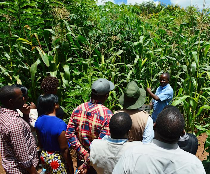 Never Ending Food's manager, Peter Kaniye, teaching a group of Malawian agriculture workers about permaculture. (Photo: Never Ending Food)