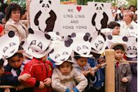 <p>Elementary school students in New York City go on a field trip to the Bronx Zoo to see pandas on loan from the Beijing Zoo. </p>