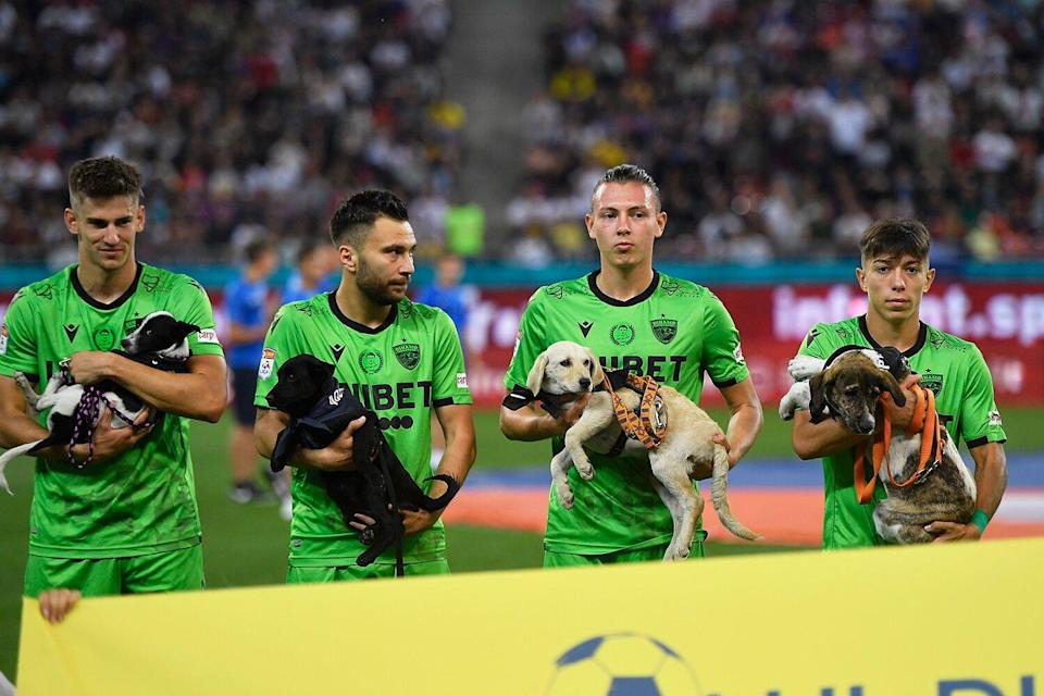 Catalin Itu, Alexandru Rauta, Deniz Giafer and Costin Amzar hold dogs in action during the Romania Liga 1 game between FCSB and Dinamo Bucharest, played on Arena Nationala, in Bucharest, on Sunday 12 September 2021.
