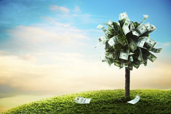 A tree with dollar bills instead of leaves.
