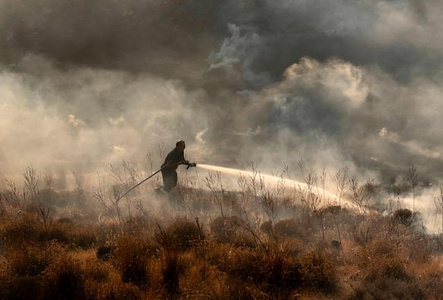 Cyprus forest fire: Blaze 'fully under control' after homes and wildlife destroyed