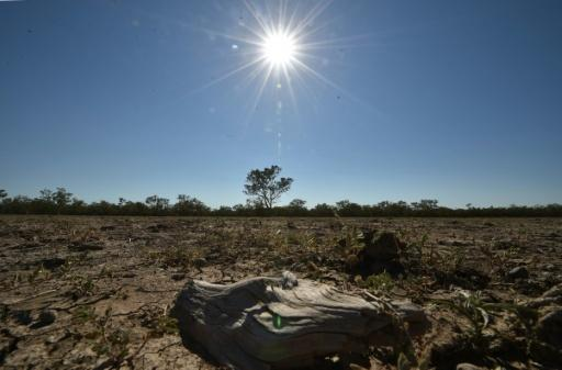 Global warming to pick up in 2015, 2016: experts