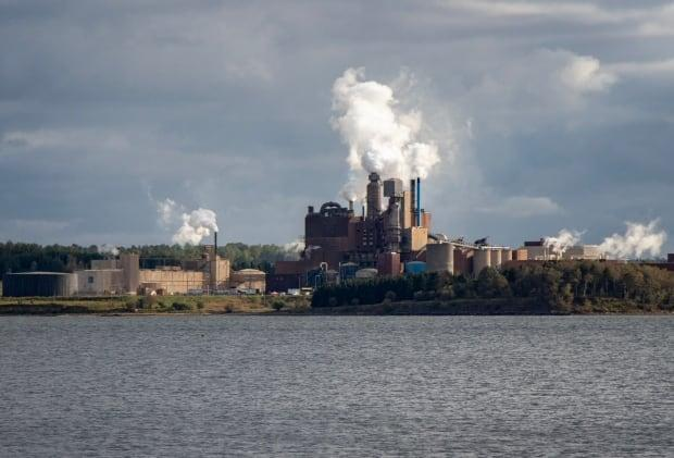 The Northern Pulp mill in Abercrombie Point, N.S., seen in this file photo from 2019, stopped operations last year. (Robert Short/CBC - image credit)
