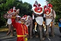 Children and adults lined up to have their pictures taken with the elephants