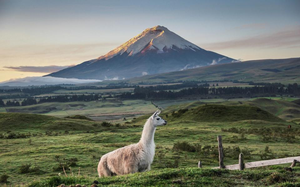 Cotopaxi - Getty