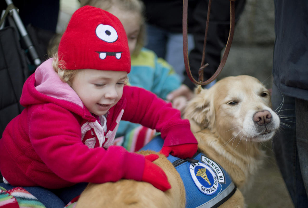 Addison Strychalsky, 2, of Newtown, Conn., pets Libby, a golden retriever therapy dog, during a visit from the dogs and their handlers to a memorial for the Sandy Hook Elementary School shooting victims in Newtown Tuesday, Dec. 18, 2012. Psychiatrists say after the grief and fear fades, most of Newtown's young survivors probably will cope without long-term emotional problems, often through play. Among the challenges will be spotting which children are struggling enough that they may need professional help. (AP Photo/David Goldman)