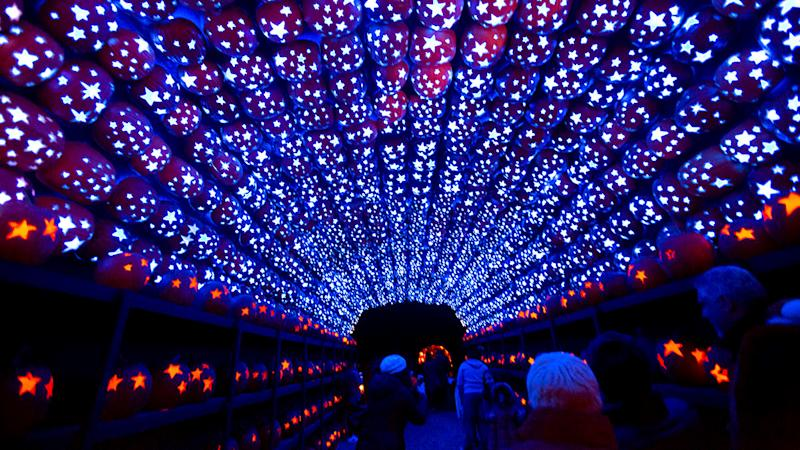 tunnel lined with pumpkins overhead with blue lights coming from star cut-outs in pumpkins