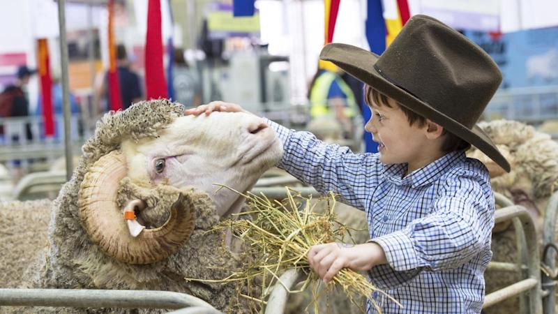 SYDNEY ROYAL EASTER SHOW 2016 PREVIEW
