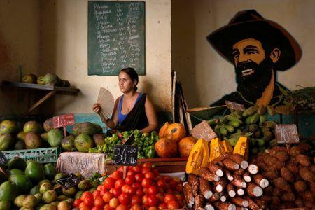 A woman sells vegetables and fruits next to the portrait of the late Cuban revolutionary Camilo Cienfuegos at the local market in Havana, Cuba July 21, 2018. REUTERS/Stringer