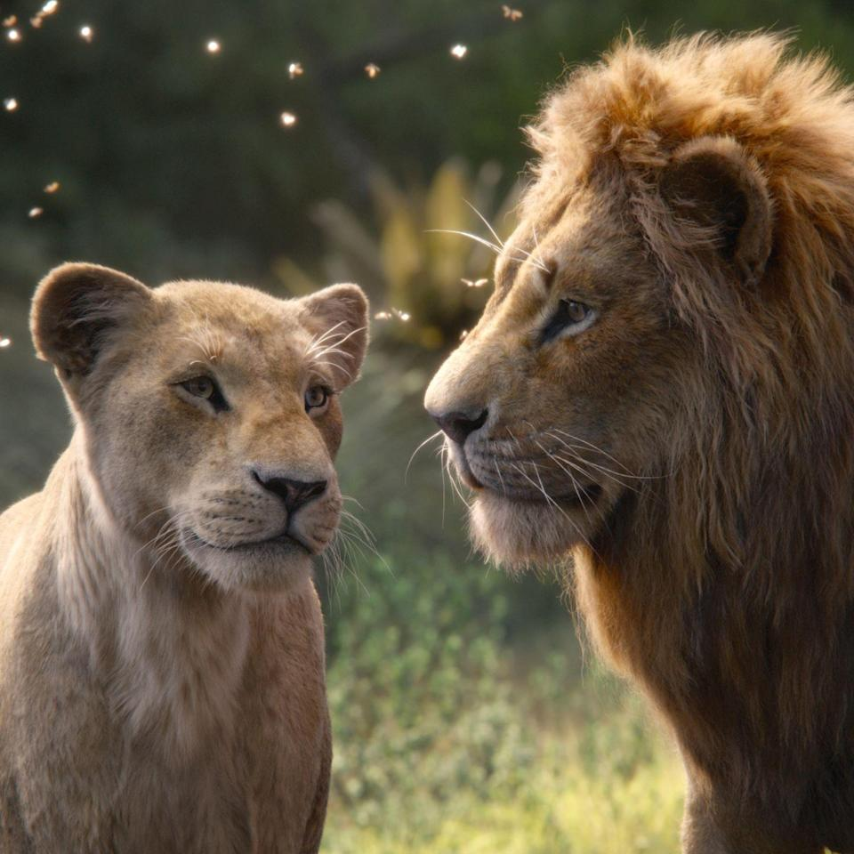"""<p>Beyoncé's companion album to the """"live-action"""" release of the <em>The Lion King</em> isn't <em>exactly</em> a movie soundtrack. There is no """"Hakuna Matata,"""" nor is there a rendition of """"Circle of Life."""" What you will unearth, however, is an African-inspired treasure featuring a lineup of talented artists and producers hailing from countries including Nigeria, Ghana, Cameroon, and South Africa. With an """"emphasis on West African Afropop and South African house,"""" per <a href=""""https://pitchfork.com/reviews/albums/various-artists-the-lion-king-the-gift/"""" rel=""""nofollow noopener"""" target=""""_blank"""" data-ylk=""""slk:Pitchfork"""" class=""""link rapid-noclick-resp""""><em>Pitchfork</em></a>, artists like <a href=""""https://www.youtube.com/watch?v=WS4wOsgw9GM"""" rel=""""nofollow noopener"""" target=""""_blank"""" data-ylk=""""slk:Shatta Wale and Major Lazer"""" class=""""link rapid-noclick-resp"""">Shatta Wale and Major Lazer</a>, <a href=""""https://www.youtube.com/watch?v=V_ZsbqSg4aE"""" rel=""""nofollow noopener"""" target=""""_blank"""" data-ylk=""""slk:Tierra Whack and Nija"""" class=""""link rapid-noclick-resp"""">Tierra Whack and Nija</a>, as well as <a href=""""https://www.youtube.com/watch?v=_IG1z-ozaXs"""" rel=""""nofollow noopener"""" target=""""_blank"""" data-ylk=""""slk:Burna Boy"""" class=""""link rapid-noclick-resp"""">Burna Boy</a> and even <a href=""""https://www.youtube.com/watch?v=RXrhqhW2kiU"""" rel=""""nofollow noopener"""" target=""""_blank"""" data-ylk=""""slk:Blue Ivy Carter"""" class=""""link rapid-noclick-resp"""">Blue Ivy Carter</a>, pay homage to the motherland.</p><p><a class=""""link rapid-noclick-resp"""" href=""""https://go.redirectingat.com?id=74968X1596630&url=https%3A%2F%2Fwww.disneyplus.com%2Fmovies%2Fthe-lion-king%2FgDBvSe4GpZPD&sref=https%3A%2F%2Fwww.harpersbazaar.com%2Fculture%2Ffilm-tv%2Fg32872244%2Fbest-movie-soundtracks%2F"""" rel=""""nofollow noopener"""" target=""""_blank"""" data-ylk=""""slk:Watch"""">Watch</a> and <a class=""""link rapid-noclick-resp"""" href=""""https://www.amazon.com/Lion-King-Gift-Beyonc%C3%A9/dp/B07VDMGQS6?tag=syn-yahoo-20&ascsubtag=%5Bartid%7C10056.g.32872244%5Bsrc%7Cyahoo-"""