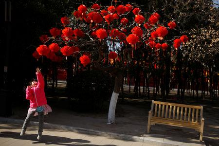 A girl jumps to reach red lanterns that decorate a tree ahead of Lunar New Year celebrations in Ditan Park in Beijing, China, February 1, 2019.   REUTERS/Thomas Peter