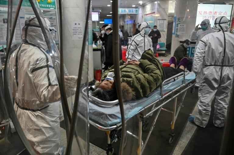 China's new viral outbreak has so far infected nearly 1,300 people and killed 41 others (AFP Photo/Hector RETAMAL)